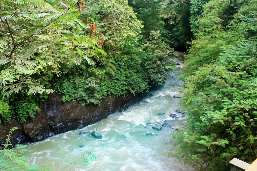 Aliran sungai yang mengalir tepat dibawah Curug Omas