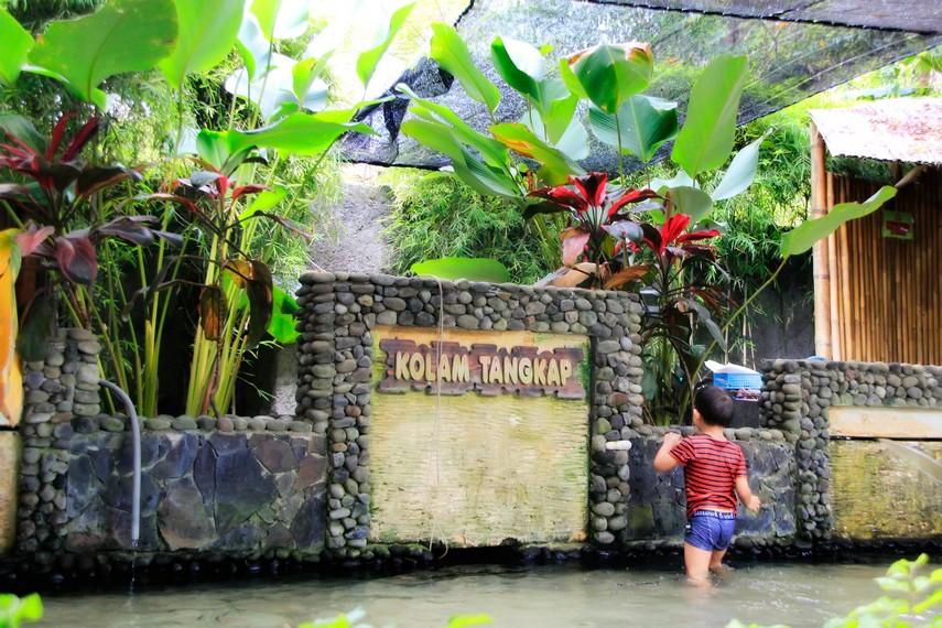 Arena kolam tangkap tempat pengunjung bisa menangkap ikan langsung dari kolamnya