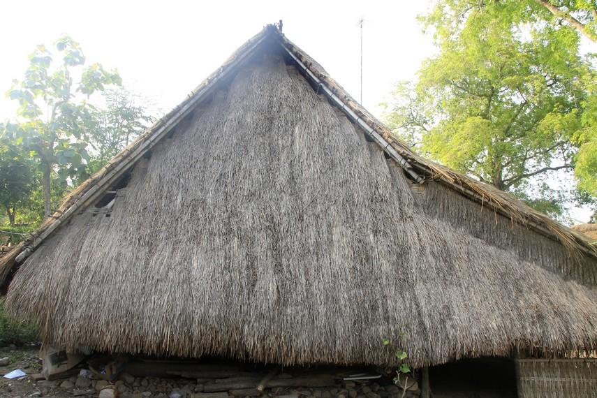 Atap rumah di Dusun Ende terbuat dari alang-alang yang dikeringkan
