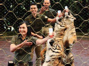 Taman Safari Bogor, Taman Satwa Bertaraf Dunia