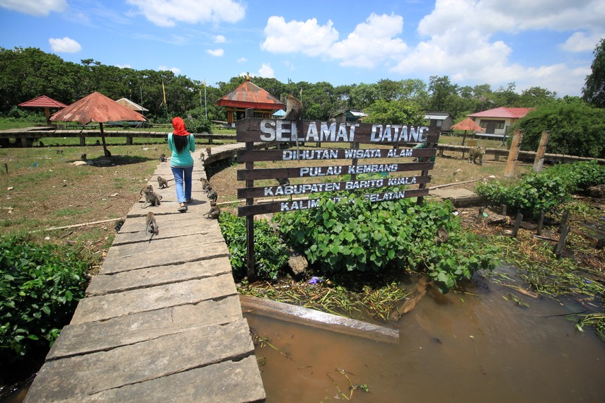 Biaya memasuki Pulau Kembang dikenakan tarif sebesar 5.000 rupiah orangnya