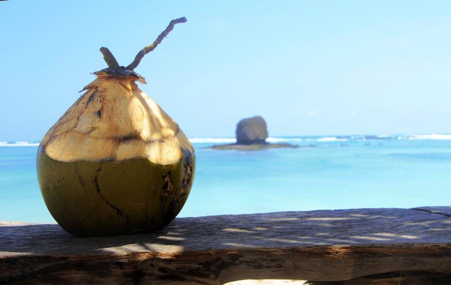 Buah kelapa menjadi pelepas dahaga yang segar ketika berada di Pantai Seger