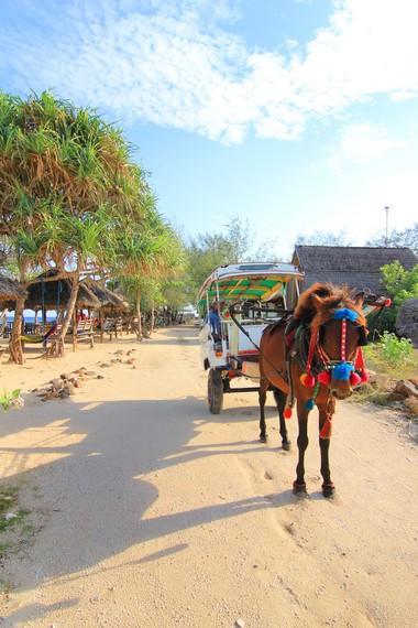 Cidomo merupakan transportasi khas jika Anda berkunjung ke Gili Meno