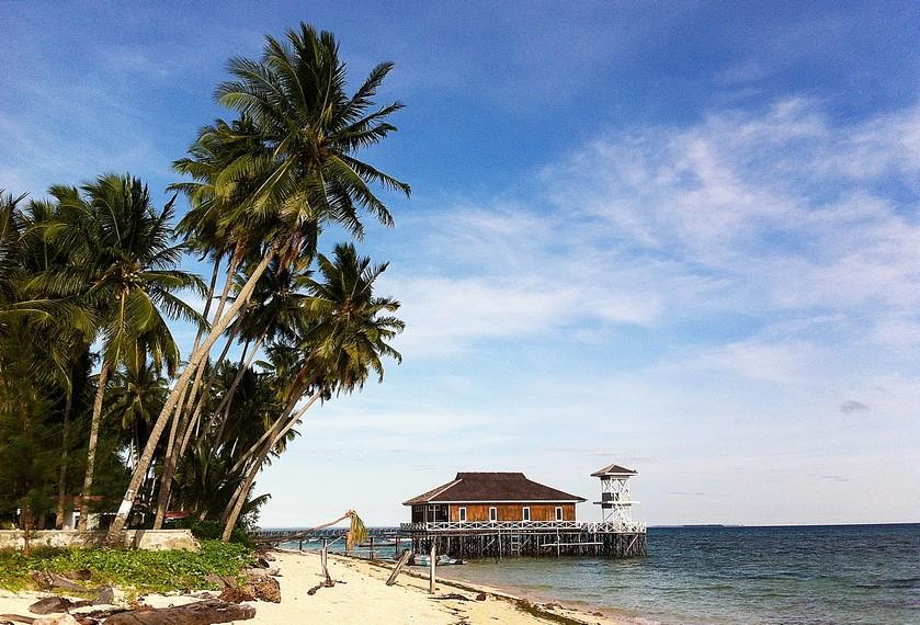 Deretan Pohon Kelapa dan resort di pesisir pantai