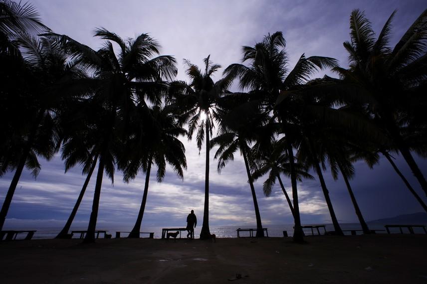 Deretan pohon kelapa yang melengkapi pantai Base G menjadi lebih indah