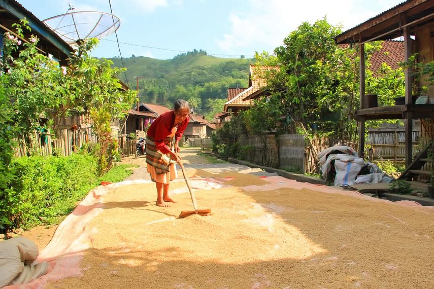 Desa Lawin terletak di Kecamatan Ropang, Sumbawa, NTB