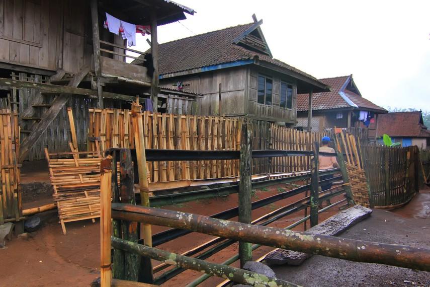 Desa Tepal terletak di Kecamatan Batulanteh, Kabupaten Sumbawa Besar, NTB
