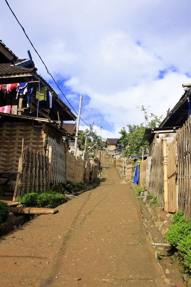 Desa Tepal terletak di salah satu pegunungan di Sumbawa Besar, tepatnya di ketinggian 900 mdpl