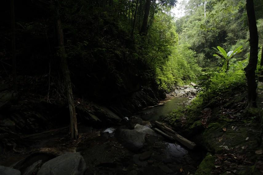 Eksotisme panorama alam sungai tempat mengalirnya air terjun Waisia