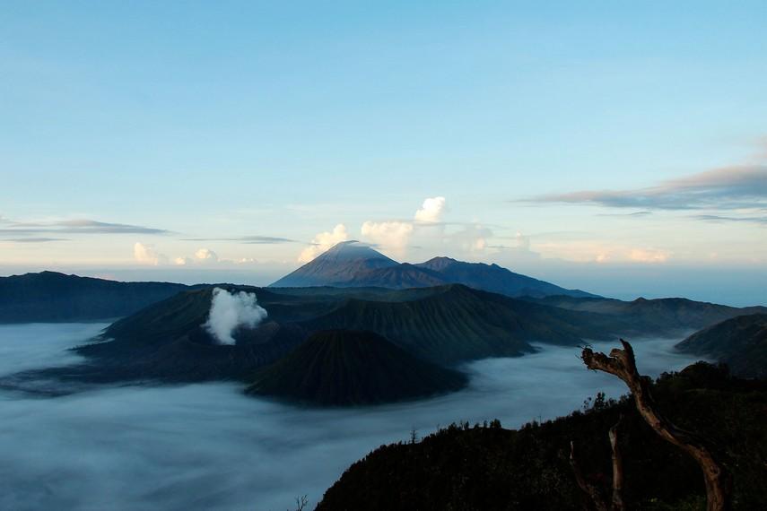 Gunung Bromo menjadi salah satu gunung yang banyak dikunjungi wisatawan lokal maupun mancanegara