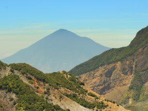 Menikmati Kawah, Edelweis, dan Hutan Mati di Gunung Papandayan