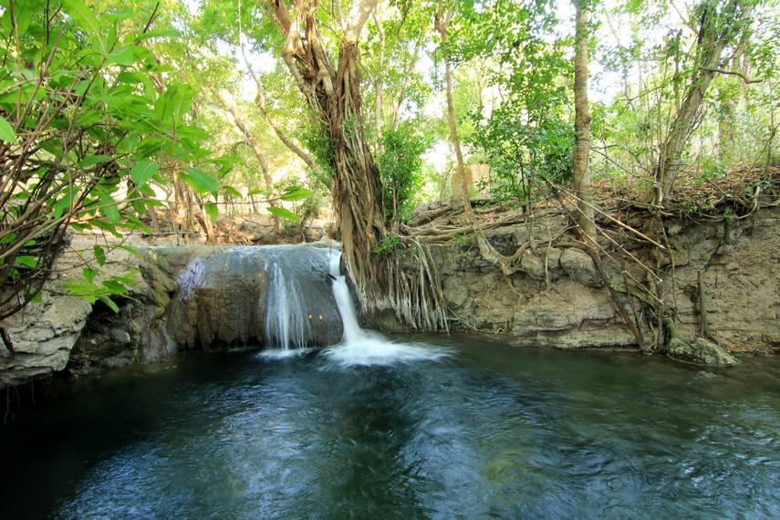 Hijaunya pepohonan yang mengelilingi air terjun menciptakan suasana asri dan menjadi pesona tersendiri saat di Air Terjun Diwu Mba i