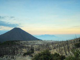 Hutan Mati, Kawasan Eksotis di Gunung Papandayan