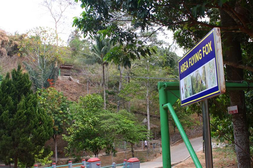 Flying Fox  menjadi salah satu aktivitas outdoor yang tersedia di Bumi Kedaton Resort