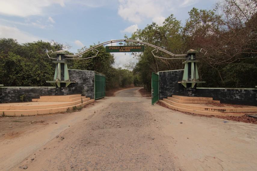 Pintu masuk pengunjung memasuki kawasan Pusat Konservasi Gajah di Provinsi Lampung
