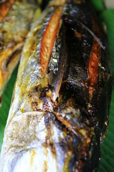 Ikan Asar yang sudah matang dengan sempurna akan terlihat kecoklatan dan kering tanpa kandungan air sedikitpun