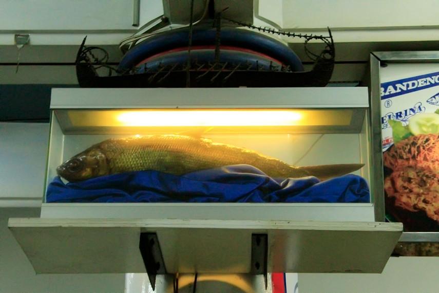 Ikan Bandeng Presto menjadi salah satu oleh-oleh khas Semarang