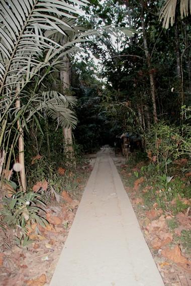 Jalan setapak menuju goa di Taman Bantimurung