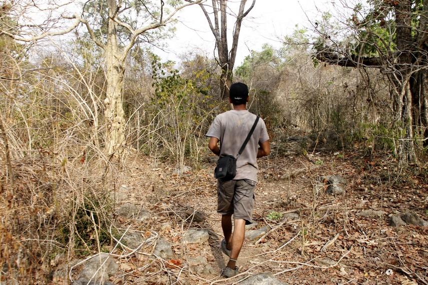 Jalan setapak yang harus dilalui pengunjung untuk bisa sampai ke Gua Liang Petang
