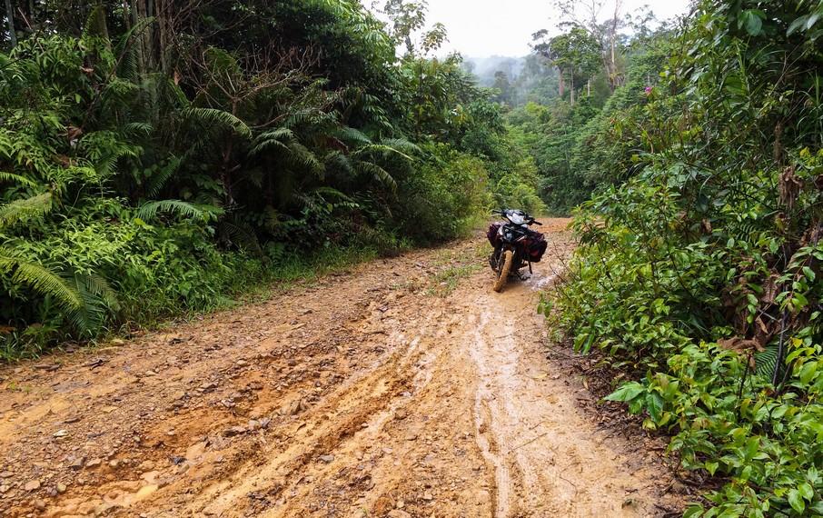 Jalur becek dari Desa Rantau Malam menuju pos rimba pendakian