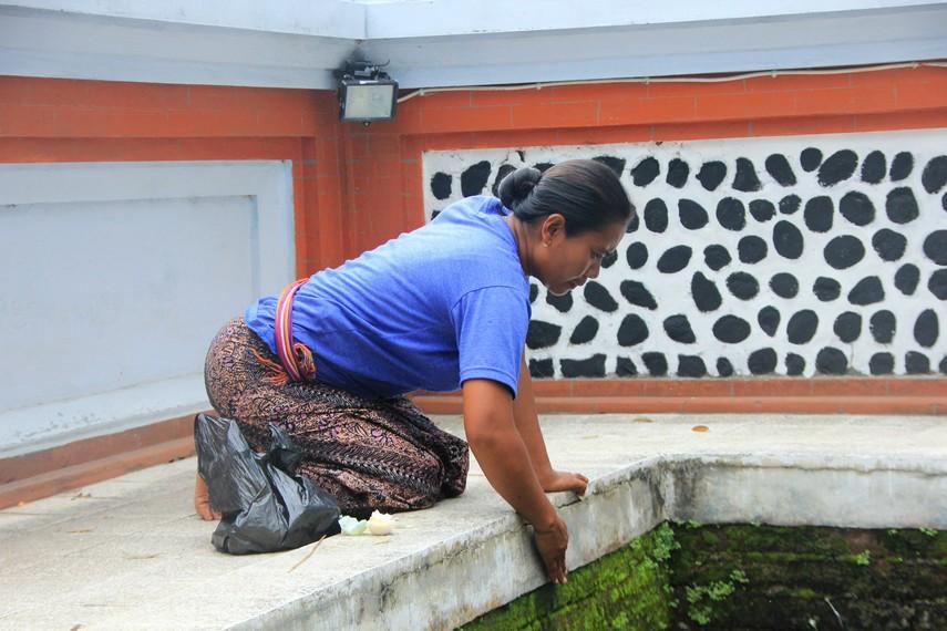 Juru kunci menepuk pinggiran kolam untuk memanggil ikan suci di Pura Lingsar