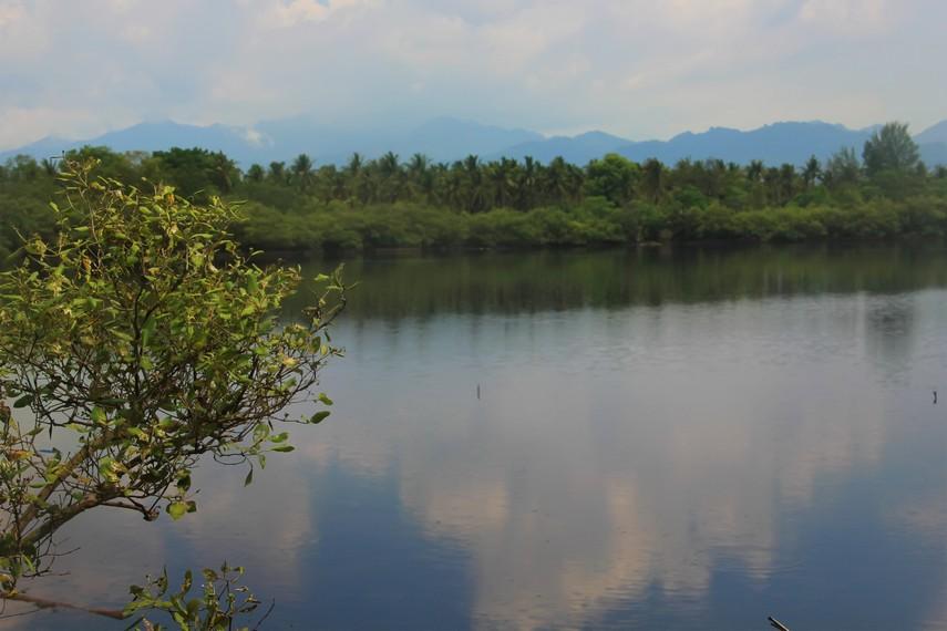 Kadang di sekitar danau terlihat beberapa bangau yang singgah untuk mencari air