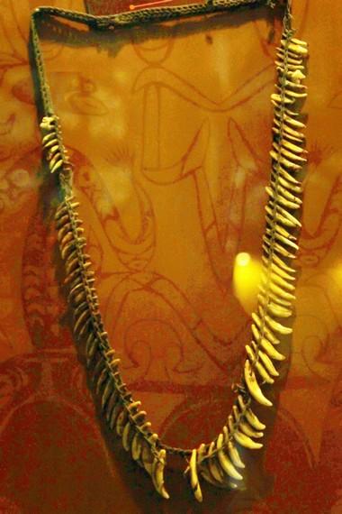 Kalung Suku Asmat yang terbuat dari gigi anjing. Kalung ini merupakan aksesori yang biasa dipakai oleh laki-laki