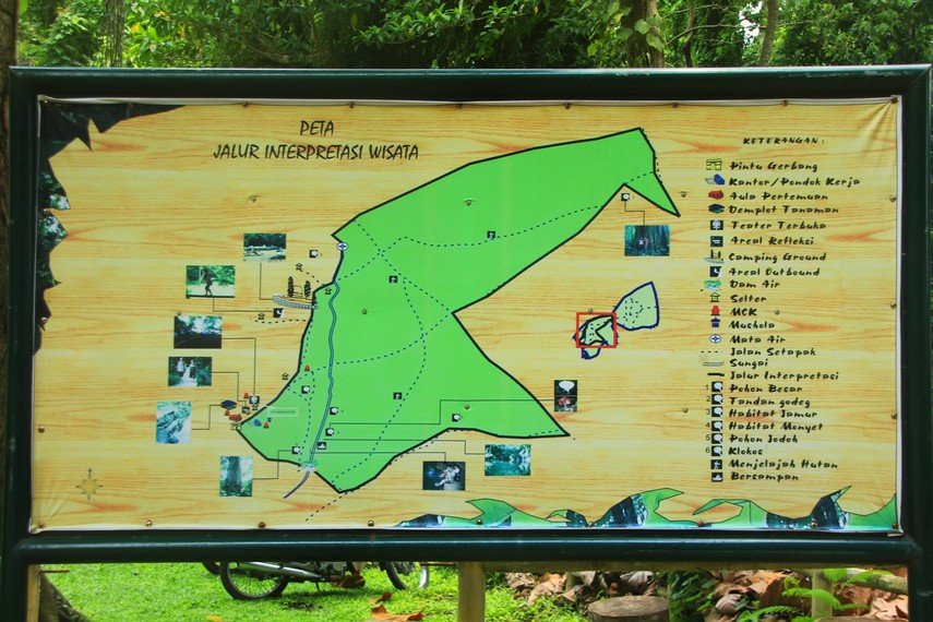 Kawasan Hutan Suranadi memiliki luas 52 hektare