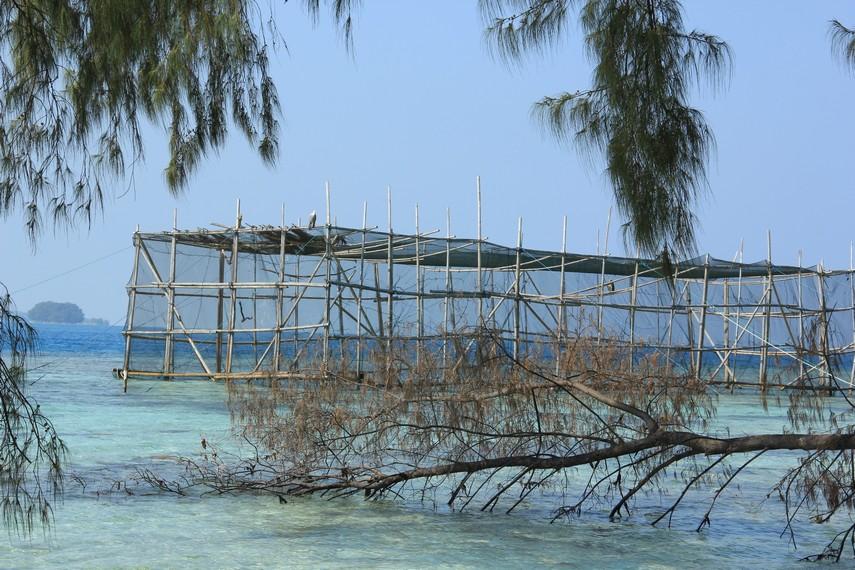 Pemandangan keramba elang bondol yang menjorok ke laut bisa dilihat pengunjung di Pulau Kotok