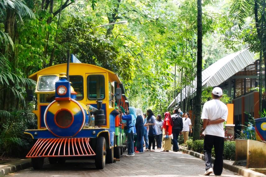 Kereta pengangkut massal untuk para pengunjung yang ingin berkeliling kebun binatang