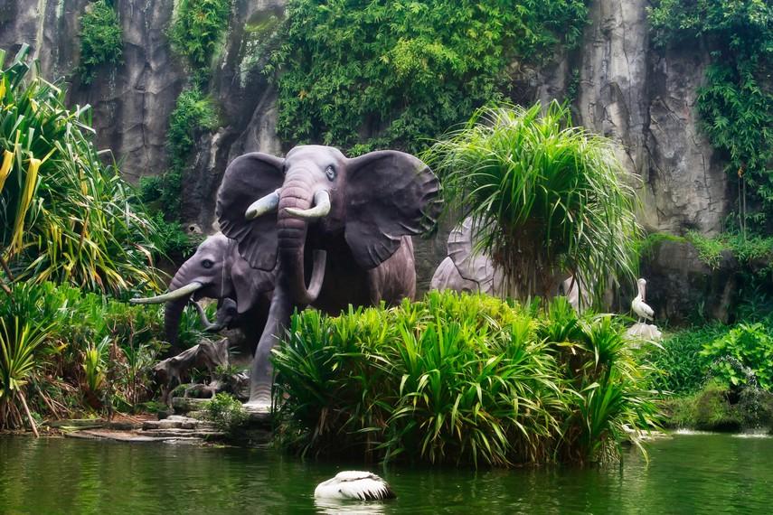 Kolam gajah yang berdiri kokoh di taman depan Kebun Binatang Ragunan