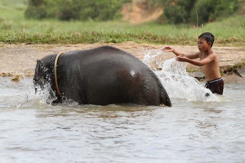 Memandikan gajah di kolam Taman Nasional Way Kambas