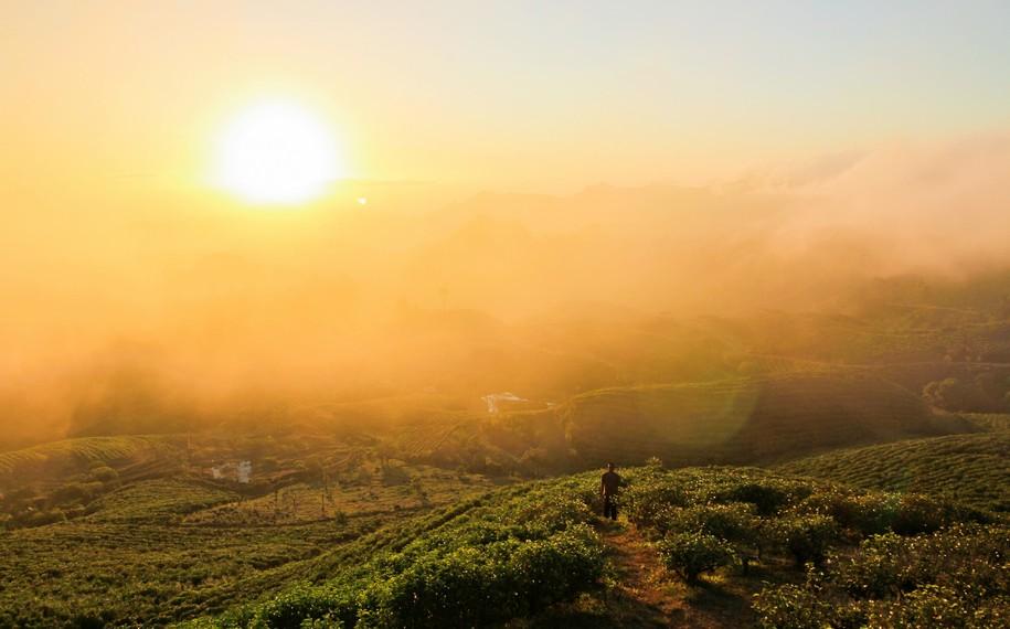 Malino Highlands bahkan tercatat sebagai salah satu landmark dunia