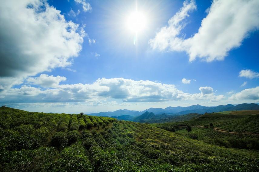 Malino Highlands yang kini menjadi primadona wisata alam pegunungan memiliki luas mencapai 200 hektar