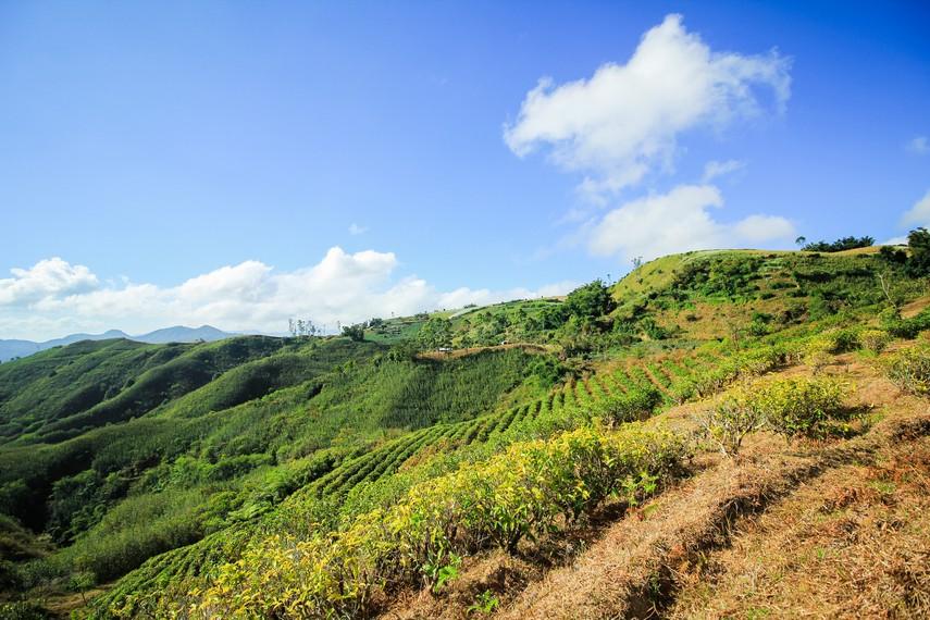 Malino memiliki gunung-gunung yang sangat kaya dengan pemandangan batu gamping dan pinus