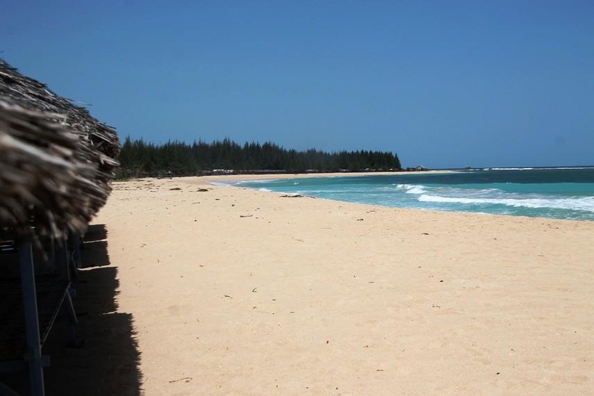 Maraknya aktivitas yang dilakukan oleh NGO di daerah sekitar pantai juga membantu meningkatnya popularitas pantai ini