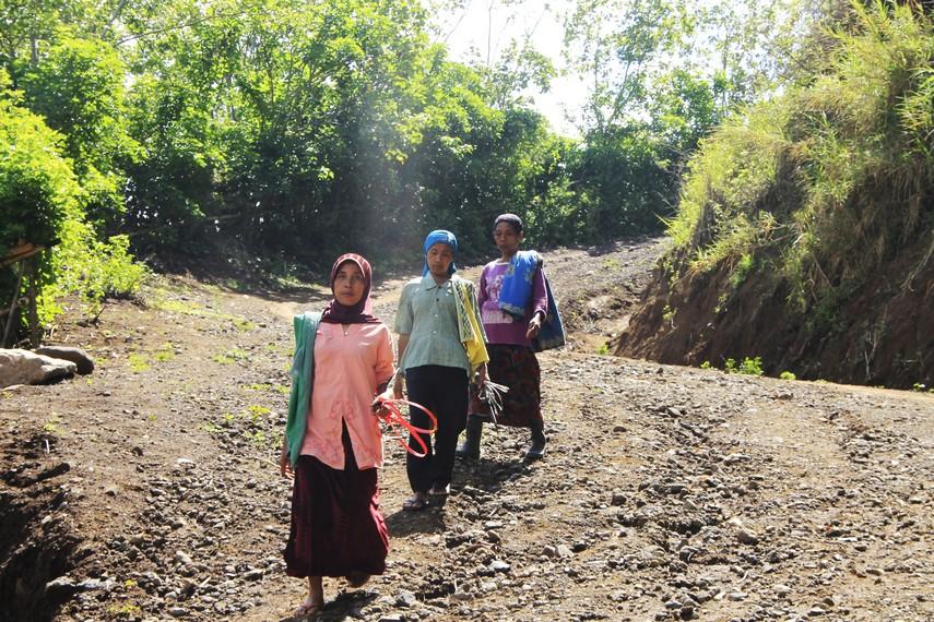Mata pencarian mayoritas masyarakat di Desa Tepal adalah bertani kopi