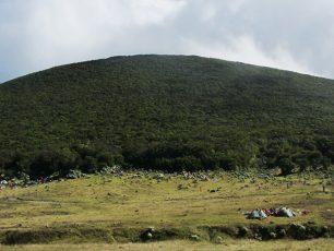 Menapaki Hutan Hujan Tropis Gunung Gede-Pangrango