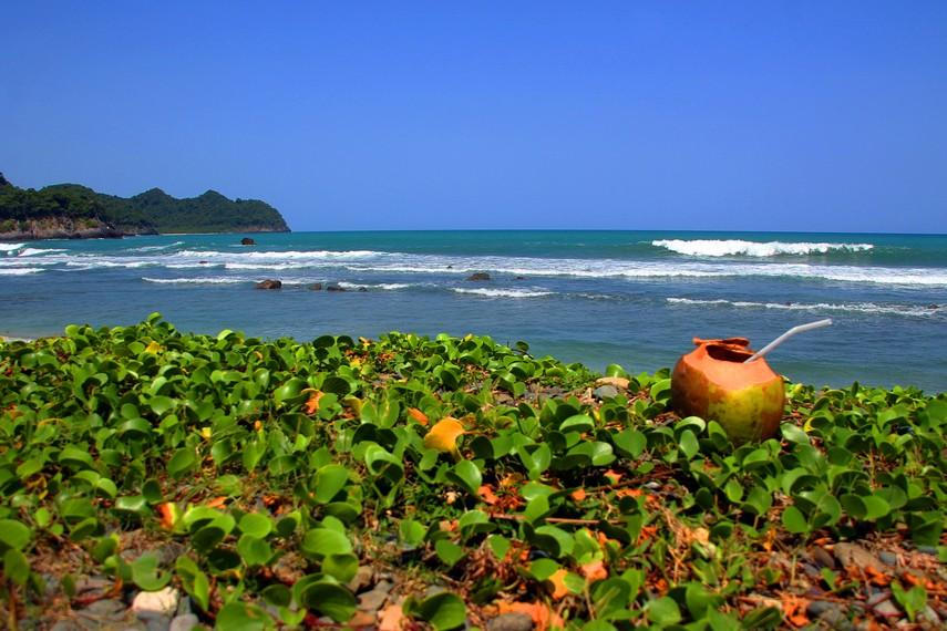 Mengamati ombak dari pinggir pantai dapat menjadi aktivitas alternatif selain selancar