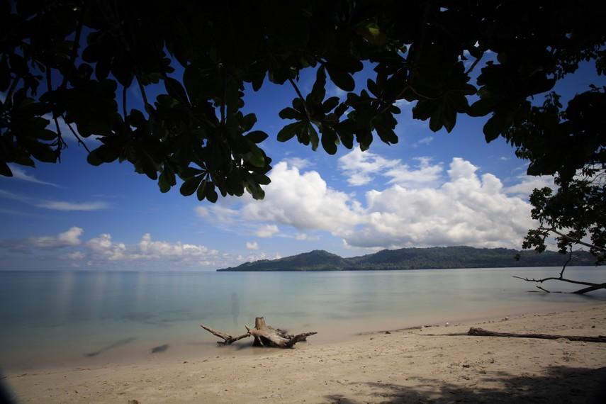 Menikmati panorama Pantai Sopapei dari rindangnya pepohonan di pinggiran pantai