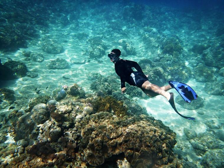 Menyelam sambil menikmati keindahan bawah laut
