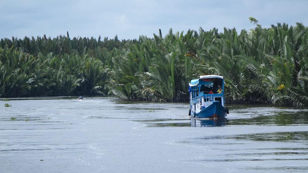 Menyusuri Sungai Sekonyer, Taman Nasional Tanjung Puting
