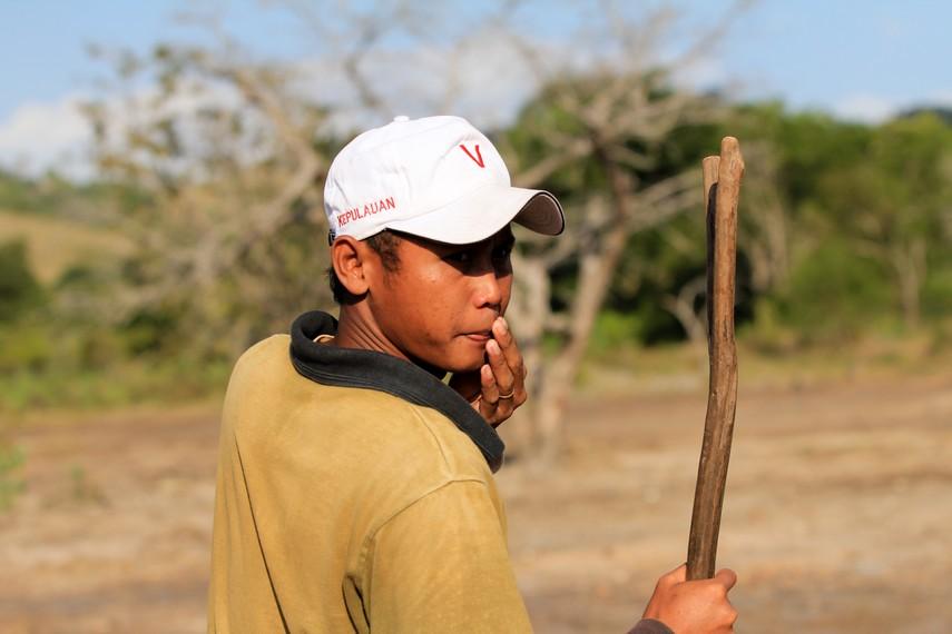 Pawang Komodo