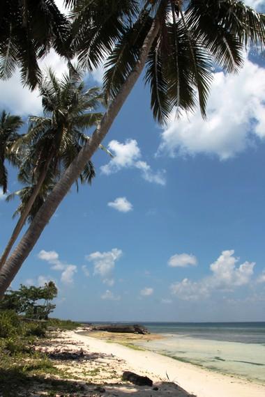 Suasana Pantai Lemo-Lemo terasa begitu permai dengan banyaknya pohon kelapa di sekeliling pantai