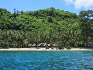 Nusa Penida, Menjelajah Keanekaragaman Hayati di Terumbu Karang nan Eksotis