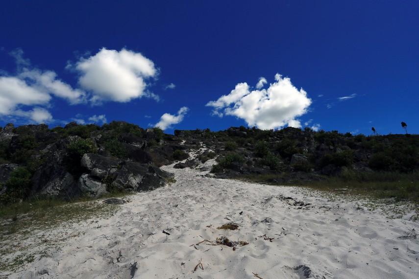 Pasir putih menghampar diantara bebatuan besar dan bukit yang berumput hijau