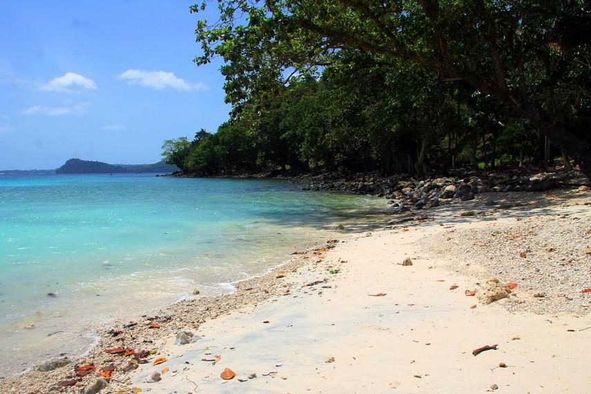 Pasirnya yang putih menjadikan Pantai Gapang rumah yang nyaman bagi keberadaan hewan kecil yang hidup disini