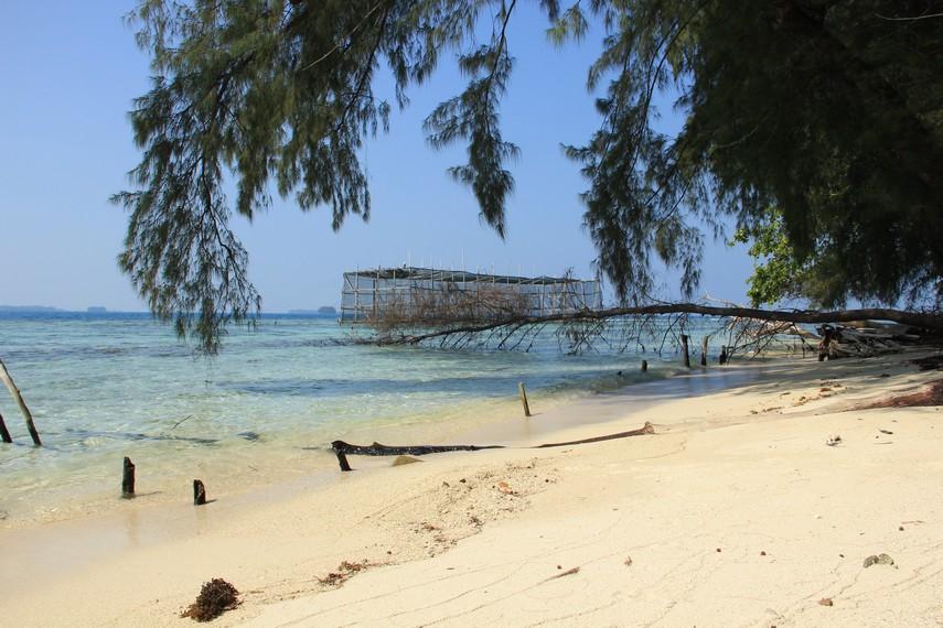 Selain menyajikan konservasi elang bondol, Pantai Kotok pun menyajikan pantai yang indah
