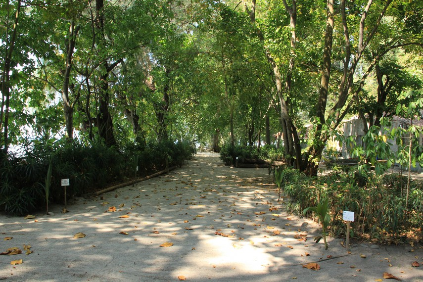 Pemandangan yang disajikan Pulau Kotok bagi pengunjung yang ingin berkeliling di pulau ini