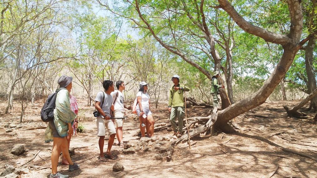 Pengunjung sedang dijelaskan mengenai habitat Komodo di Pulau Rinca